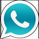 WhatsApp + icon