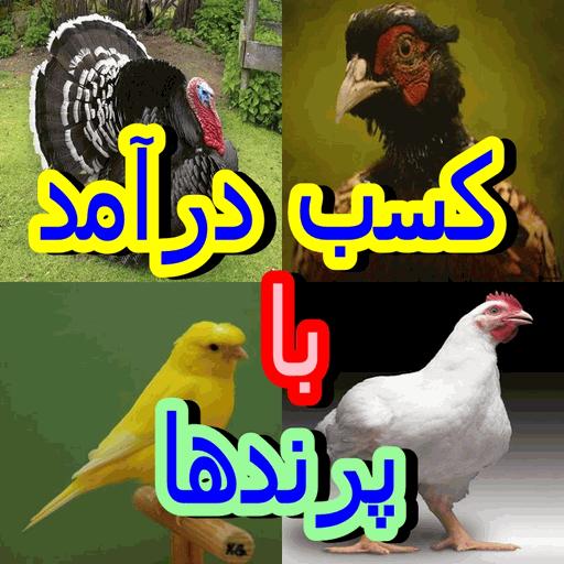 کسب درآمد با پرندها