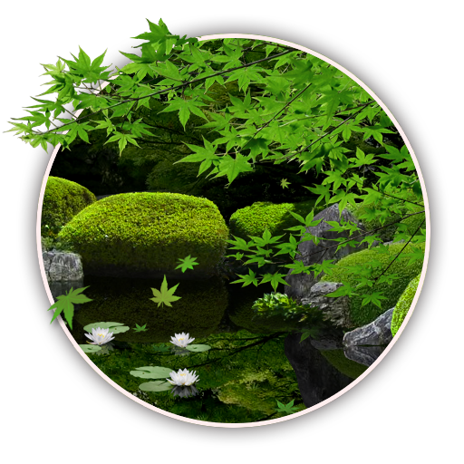 zen garden summer - photo #15
