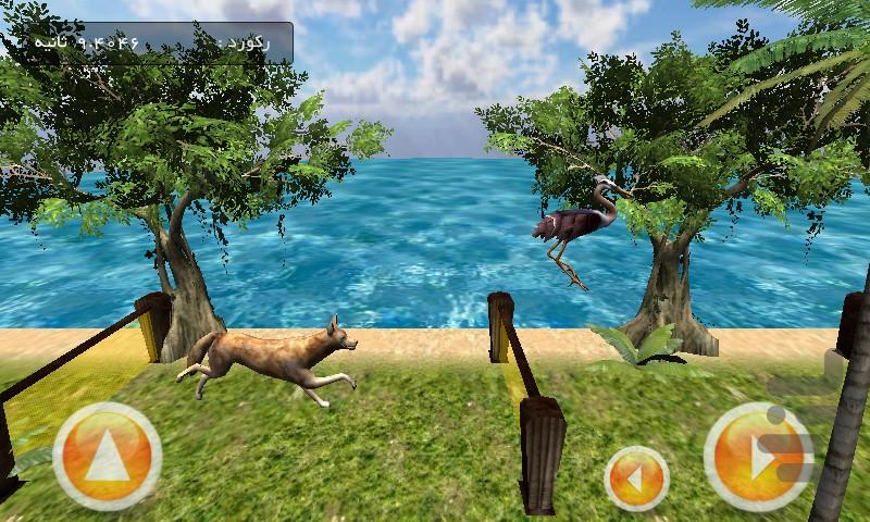 گرگ و مرغ screenshot