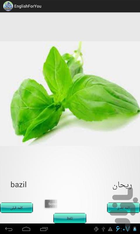 com.mohammad.englishforyou1.jpg