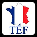 آزمون TEF و TEF aQ