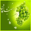 Rooze Dari Ba Tame Salamati