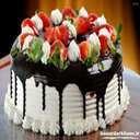 کیک پز۲