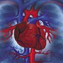 دانستنی بیماری قلبی