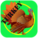 Turkey education