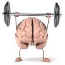 راه های مفید و موثر تقویت حافظه