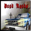 جاده های مرگبار