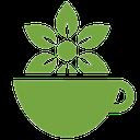 چای ها و دمنوش ها
