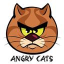 AngryCatsFarsiDemo