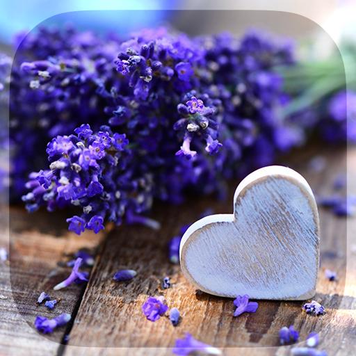 Love flower wallpaper image download