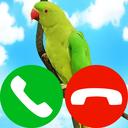 fake call pet game