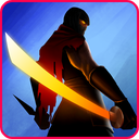Ninja Raiden Revenge