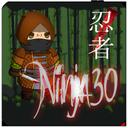 نینجا30