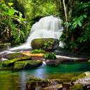 Waterfalls Live Wallpaper