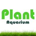 آکواریوم پلنت ( گیاهی )