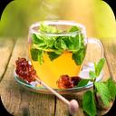 Herbal Remedies + Knowledge