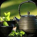 Herbs + Traditional Medicine