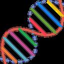 ژنوم (اختصارات و اصطلاحات ژنتیک)