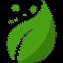 پلنتیوم (اصطلاحات گیاه شناسی)