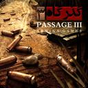 PASSAGE III