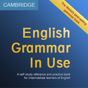 Grammar In Use (Intermediate)