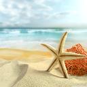 پس زمینه ساحل زیبا
