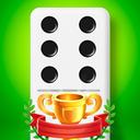 Dominoes - 5 Boards Game Domino Classic in 1