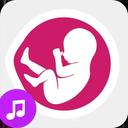 موسیقی ویژه دوران بارداری
