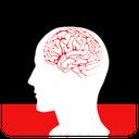 Brain Power Leitnerbox