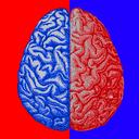 2cars+ (بازی تقویت مغز)