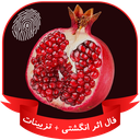 Package of Yalda night