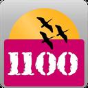 1100 واژه ای که شما باید بدانید
