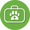 Practice of Small Animal Formulary