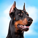 Doberman Dog Simulator