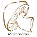 آشپزی با قارچ - 88 غذا با قارچ