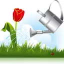 پرورش گل و گیاه