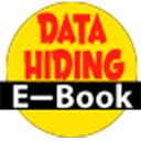 Data Hiding Techniques