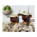 سامانه استعلام خدمت سربازی