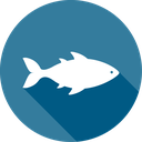 بیماری های ماهی (بیماری های آبزیان)