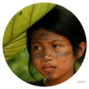 راز نهفته در جنگل آمازون