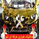 Mechanic Professional Show (Auto)