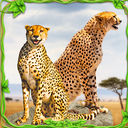 Furious Cheetah Family Simulator