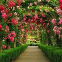 آموزش جامع پرورش گل و گیاه