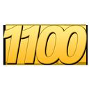 ۱۱۰۰ لغتی که باید بدانید