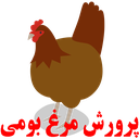 Native Chicken Breeding