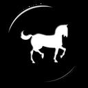 بیماری های اسب
