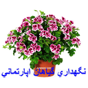 Maintenance houseplants