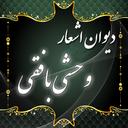 Vahshi e Bafghi