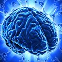 Brain Waves: Deep Sleep, Alpha Waves, Delta Waves